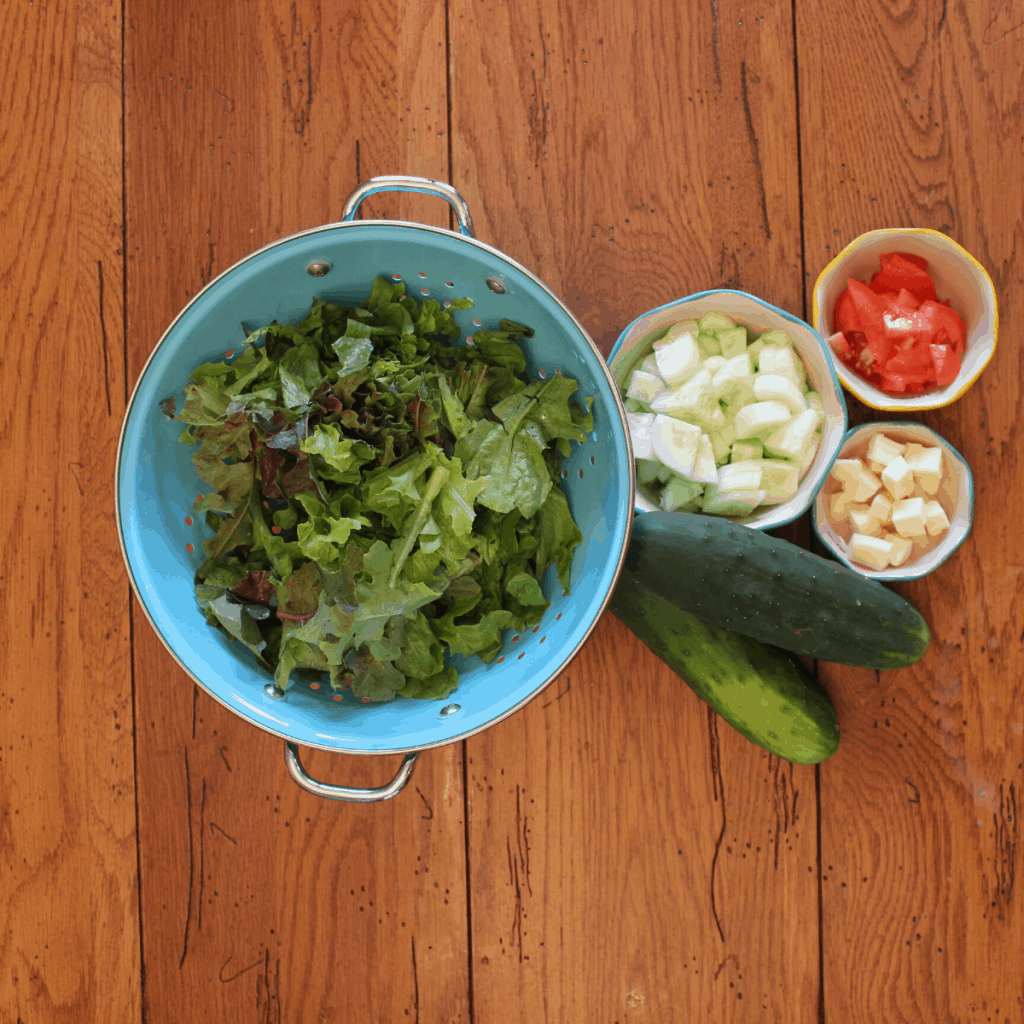 healthy, fresh ingredients for pasta salad