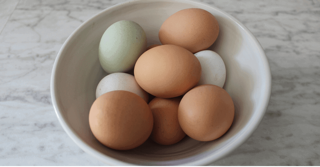 Simply Rooted Farmhouse eggs
