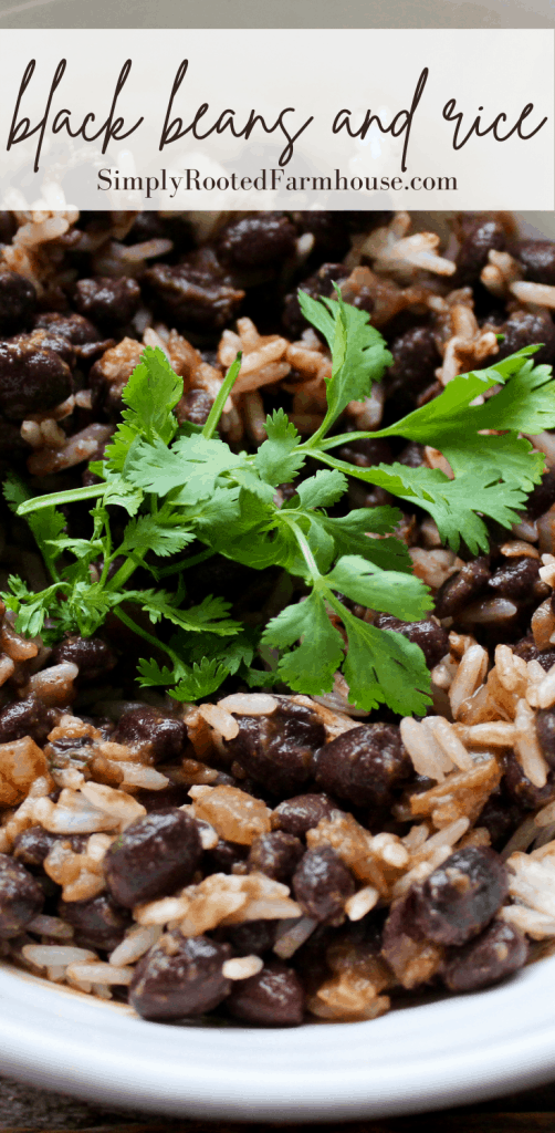 black beans and rice pin