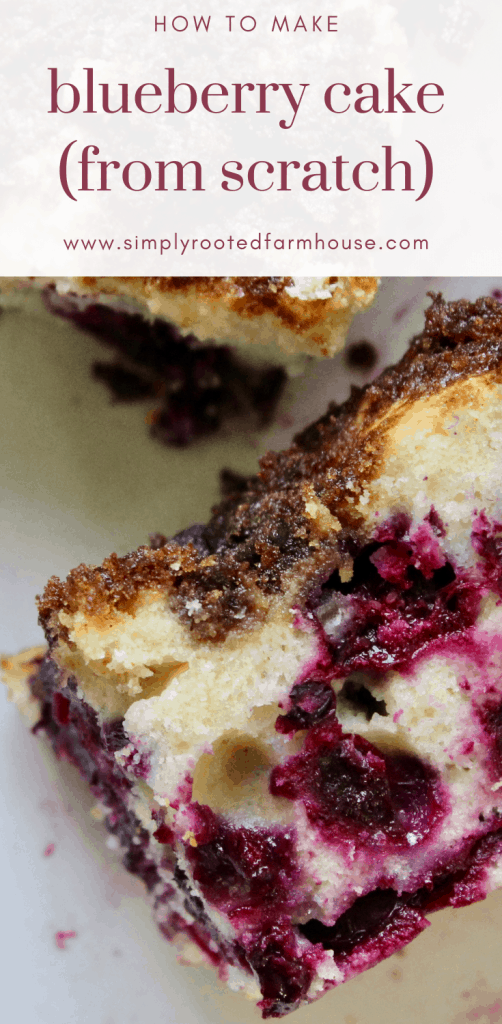 blueberry cake from scratch