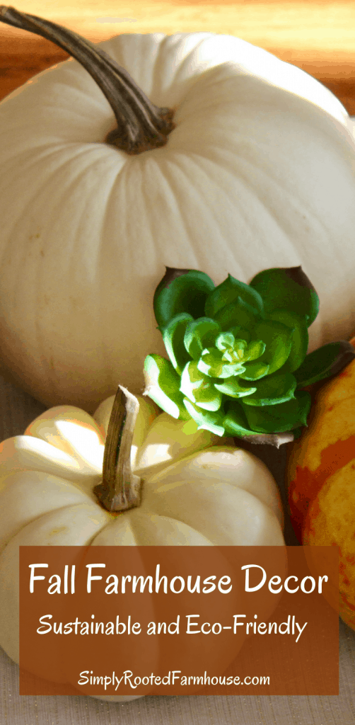sustainably decorate for fall with pumpkins pin