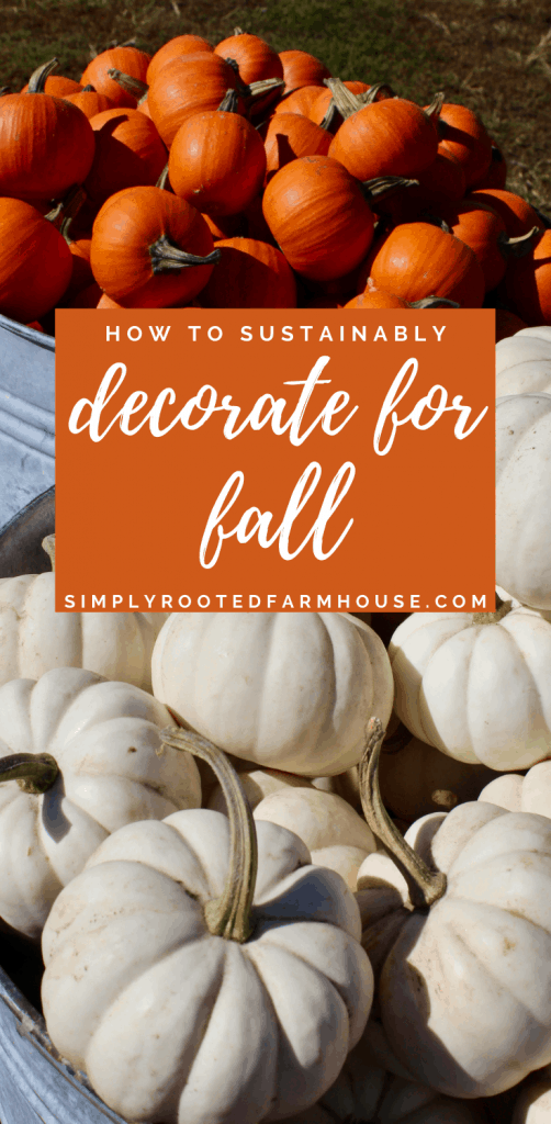 sustainably decorate for fall eco friendly decor