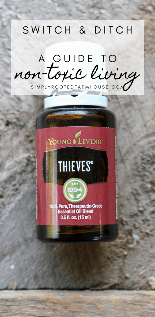 non-toxic living guide pin