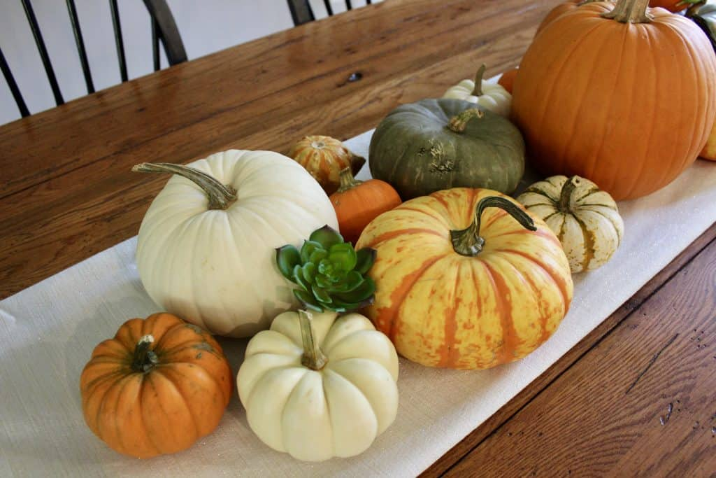 sustainable fall decor with pumpkins