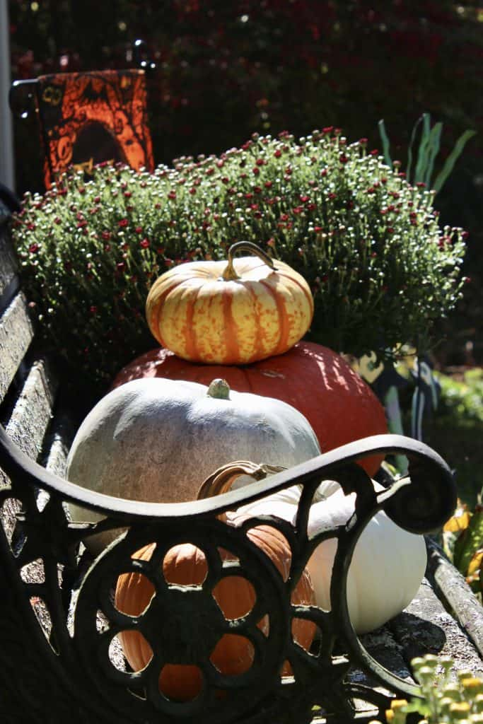 eco-friendly decorating with pumpkins
