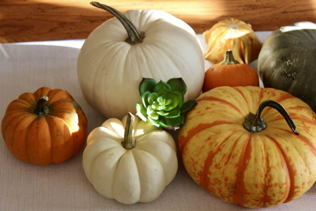 farmhouse sustainably decorated with pumpkins for fall