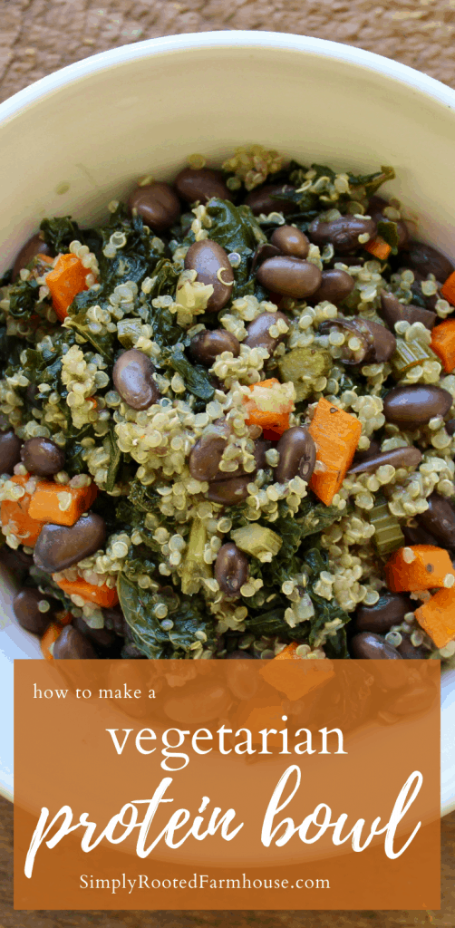 bowl of delicious vegetarian protein blend