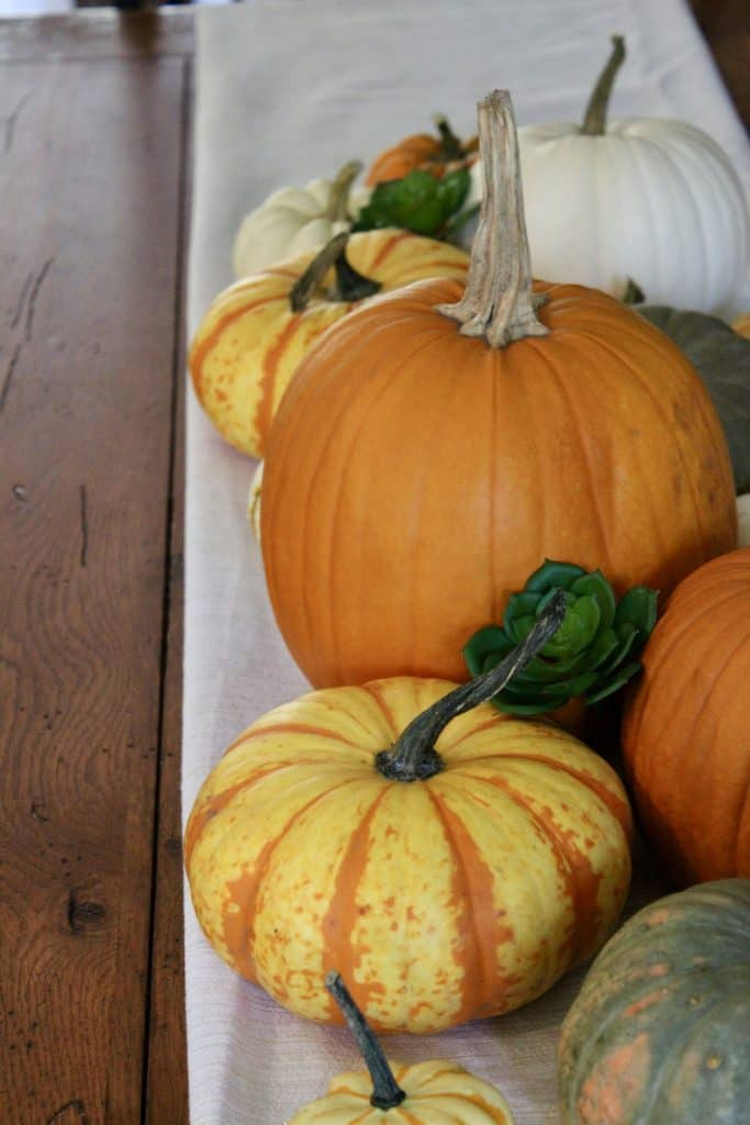sustainably decorate for fall