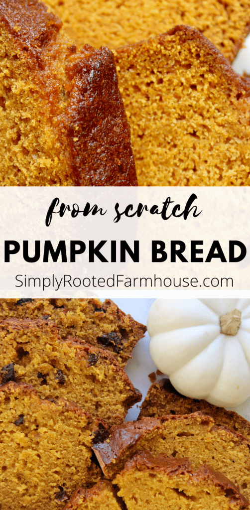 how to make pumpkin bread from scratch
