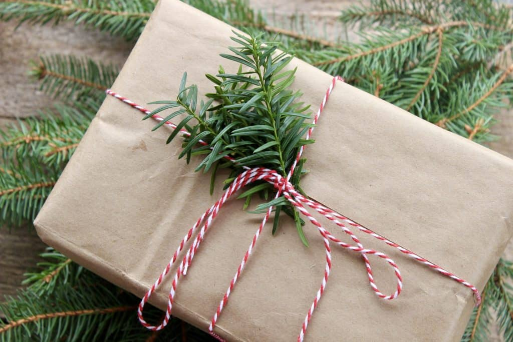 eco friendly christmas package