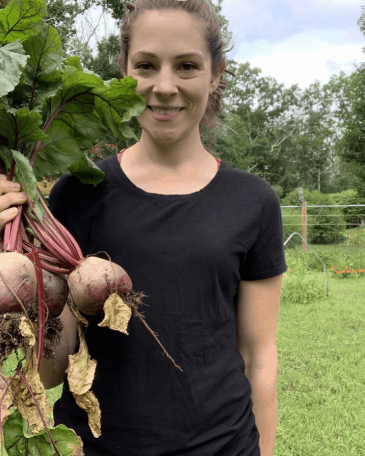 homesteading in new england carrying beets