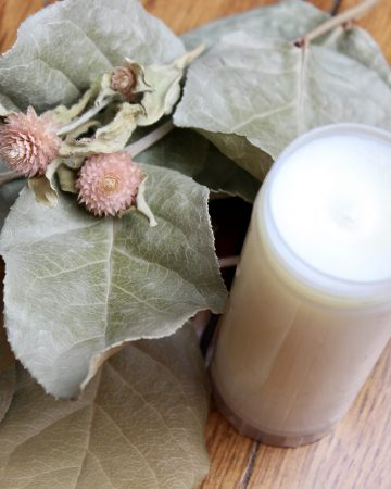 homemade deodorant made with mango butter and other natural ingredients