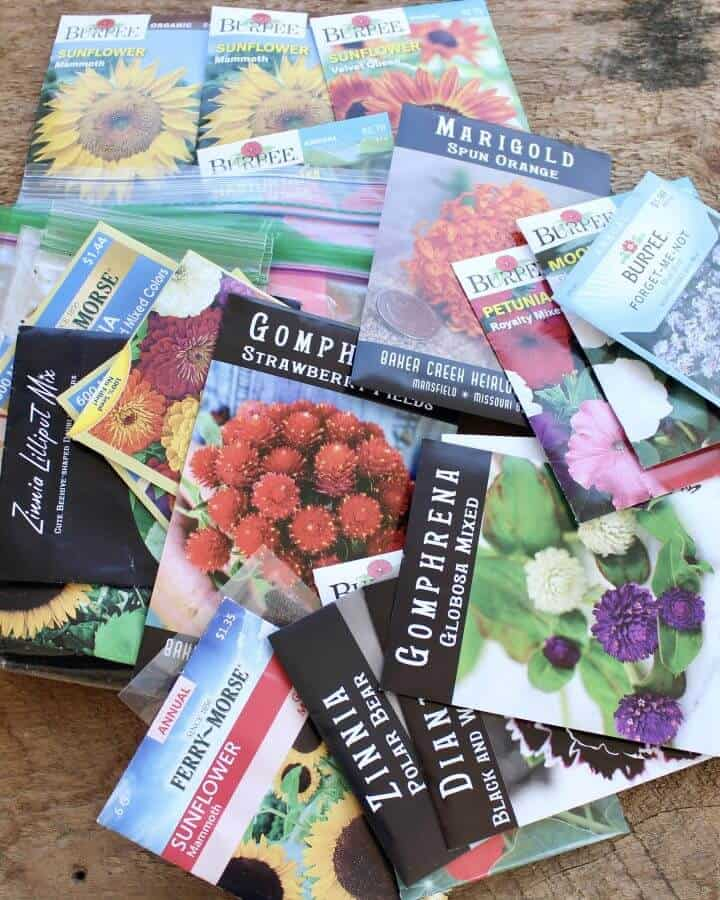 seed packets for starting seeds indoors