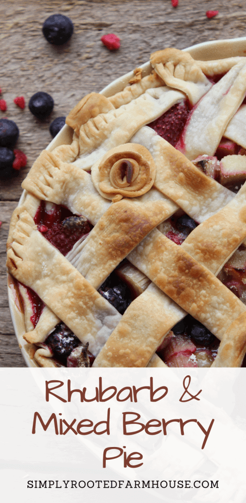 rhubarb mixed berry pie pin