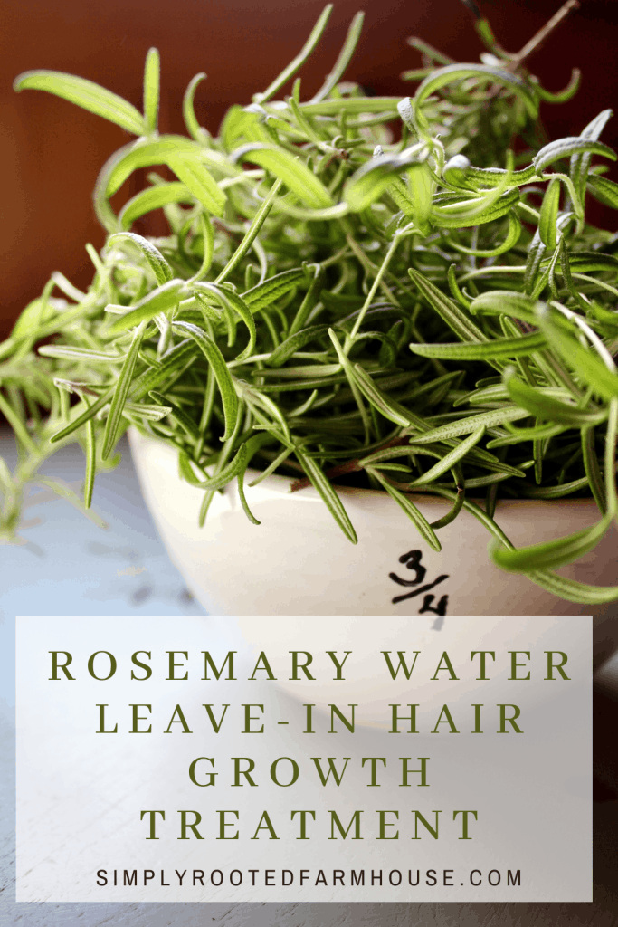 rosemary water leave in hair growth treatment image of rosemary in a jar